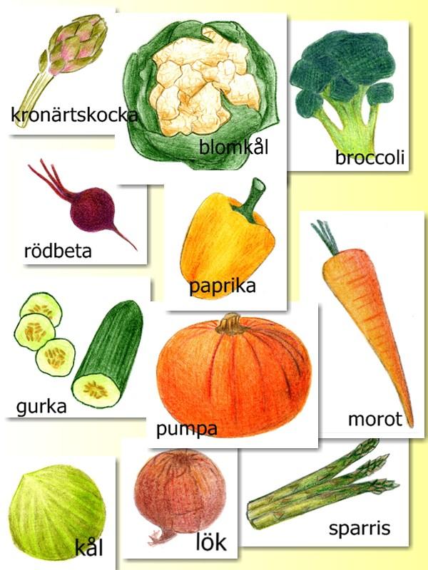 vegetables - v u00e5rdsvenska